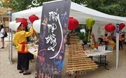 Cửa sổ văn hóa Việt Nam tại Lyon