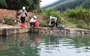 Vụ nước Sông Đà có mùi khét: Khoanh vùng không để dầu tràn ra ngoài