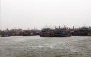 Đà Nẵng: Mưa lớn trên diện rộng do ảnh hưởng bão số 5