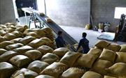 Gỡ khó trong tiêu thụ lúa gạo