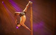 Việt Nam tham dự giải vô địch thế giới 'Yoga trên cột' lần đầu tiên