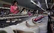 Chuyên gia: Ký kết EVFTA và EVIPA nâng tầm vị thế của Việt Nam