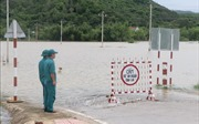 Cảnh báo lũ trên các sông từ Quảng Nam đến Ninh Thuận từ đêm 3/11