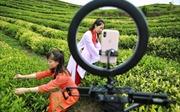 Bùng nổ số lượng người dùng livestream tại Trung Quốc
