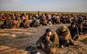 Hàng chục tay súng IS ra hàng tại Syria