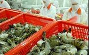 Nhiều hàng hóa Việt Nam có nhiều tiềm năng mở rộng thị trường tại UAE