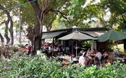 TP Hồ Chí Minh 'đòi' lại mảng xanh đô thị cho người dân