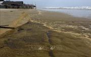 Vụ nước biển đổi màu ở Quảng Ngãi: Một trong 4 mẫu có nồng độ pH vượt ngưỡng