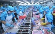Giá trị xuất khẩu qua các cửa khẩu biên giới An Giang đạt 1,72 tỷ USD