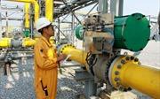 Khí thiên nhiên suy giảm, Việt Nam sắp phải nhập khí hóa lỏng để phát điện