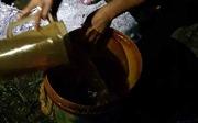 Hàng nghìn lít dầu bị rò rỉ ra cánh đồng Thanh Hóa
