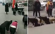 Cận Tết, công ty Trung Quốc phạt nhân viên bò trên đường vì không đạt chỉ tiêu