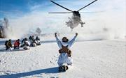 NATO hủy tập trận vì COVID-19