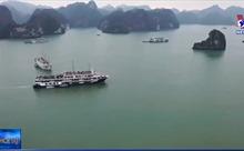 Các chủ tàu du lịch tại Quảng Ninh xin dừng hoạt động