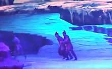 Video chó sói đuổi cắn diễn viên trên sân khấu kịch ở Trung Quốc