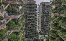 Độc đáo khu chung cư 'rừng thẳng đứng', ban công um tùm cây cối