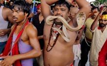 Rùng mình lễ hội rắn ở Ấn Độ