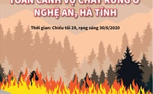 Toàn cảnh vụ cháy rừng ở Nghệ An, Hà Tĩnh