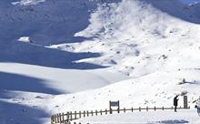 Giới khoa học Trung Quốc phủ chăn ngăn băng tan
