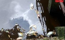 TP Hồ Chí Minh: Cá trong hồ điều hoà công viên Hoàng Văn Thụ bỗng dưng chết hàng loạt