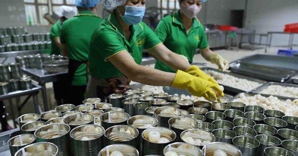 Đẩy nhanh tiến độ kiểm dịch trái cây xuất khẩu vào...