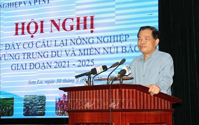 Thúc đẩy cơ cấu lại nông nghiệp các tỉnh Trung du và miền núi Bắc Bộ