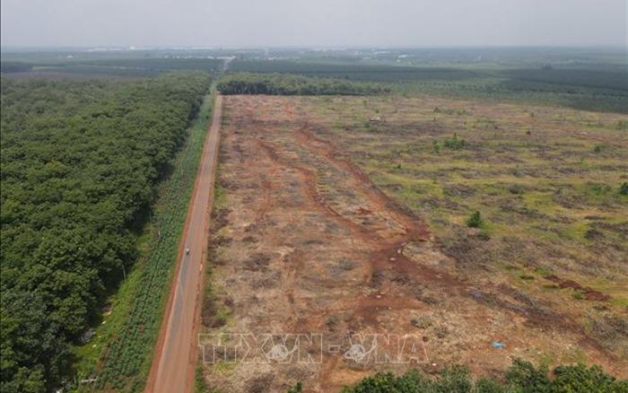 Ngày 20/10, Đồng Nai sẽ bàn giao mặt bằng giai đoạn 1 sân bay Long Thành